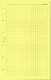 Succes Senior 100 Vel Geruit Notitiepapier, Crème (XS5C)