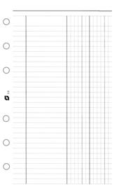 Succes A5/Executive 100 Vel kaspapier, Wit (XE8)