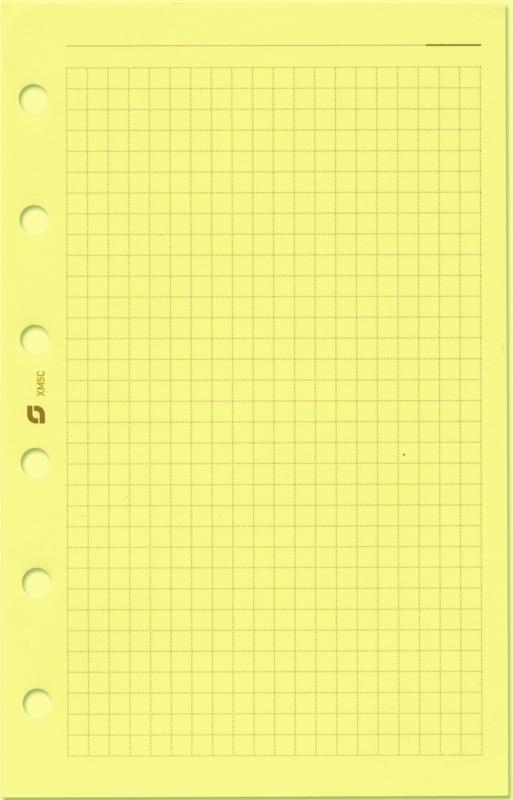 Succes Mini 100 Vel Geruit Notitiepapier, Crème (XM5C)
