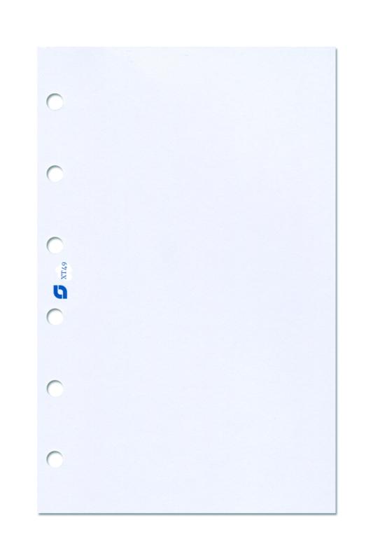 Succes Standard 2x 100 Vel Laserprinterpapier, A4 (XT49)