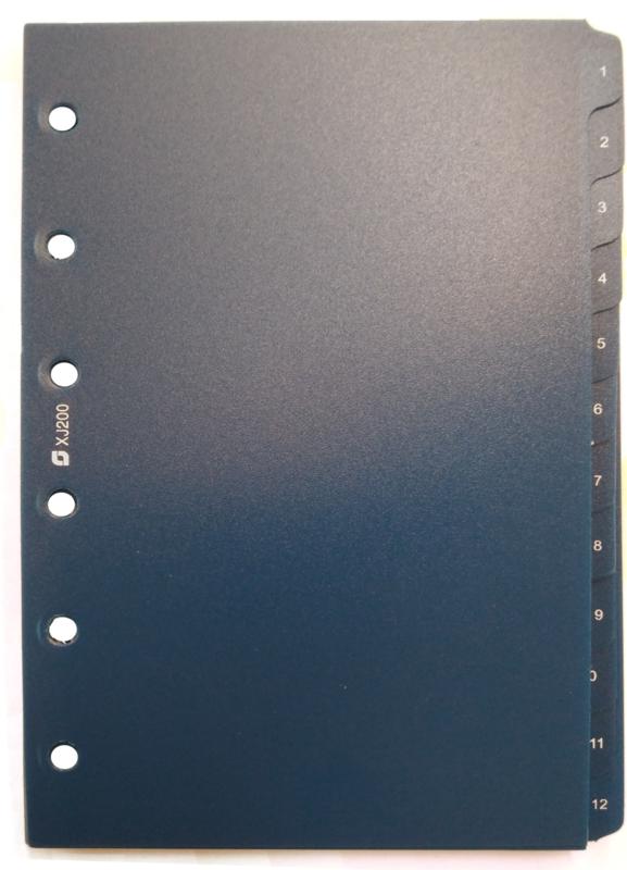 Succes Junior Tabkaarten, Syntetisch, 1 T/M 12, Blauw (XJ200)