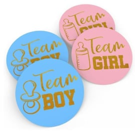 Stickers Team Boy/Team Girl Gender Reveal