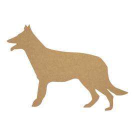 Hond 2