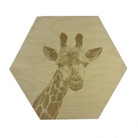 Hexagon Giraffe