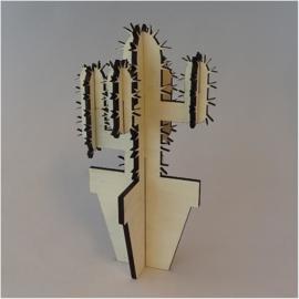 Houten cactus: Puntia