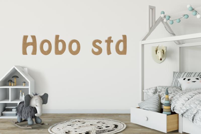 Hobo STD
