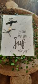 kaart met gelukspoppetje Juf