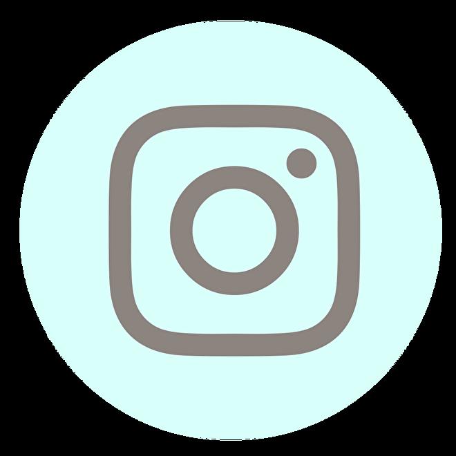 instagram icoon