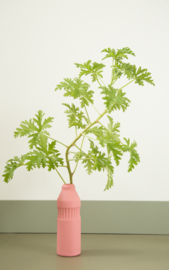 Foekje Fleur   Porcelain Bottle Vase #11   Old Red