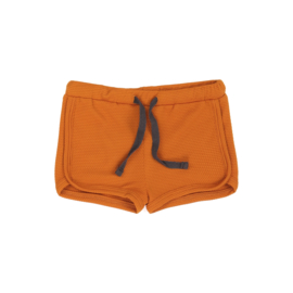 Phil & Phae | Swim Shorts | Tangerine