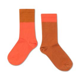 Repose Ams | Socks | Vibrant Red Autumn Block