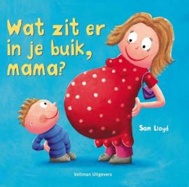 Boek | Wat zit er in je buik, mama