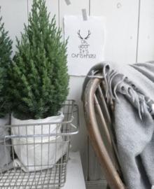 Kaart A5 - Oh Deer it's Christmas