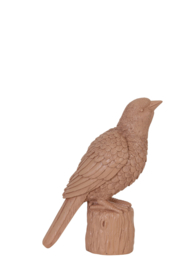 Vogel - oud roze - medium