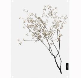 Labelr - Tuinposter - Dry plants - Bruin