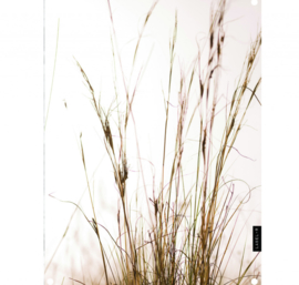 Labelr - Tuinposter - Grass