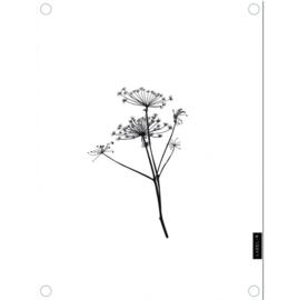 Labelr - Tuinposter - Berenklauw - Wit