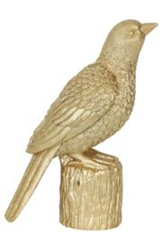Vogel - Goud