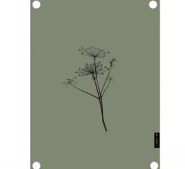 Labelr - Tuinposter - Berenklauw - Olijfgroen