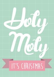 """Studio Inktvis • kerstkaart """"holy moly"""""""