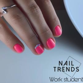 2 daagse Russische Manicure  10&11 juniAssen AANBETALING