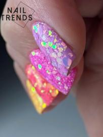 2 daagse Russische Manicure 10 & 11 Juni Assen