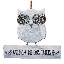 Mozaiekpakket 52  Welkom Uil Hedwig
