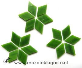 Wybertjes/Ruitjes 15x25 mm per 20 Mosgroen 023-2