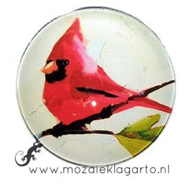 Cabochon/Plaksteen Glas 30 mm Rode vogel op tak 25270