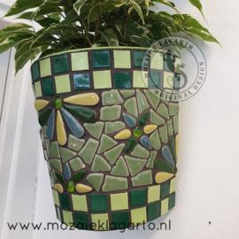 Mozaiekpakket 46 Plantenbak Muurbloempje Groen