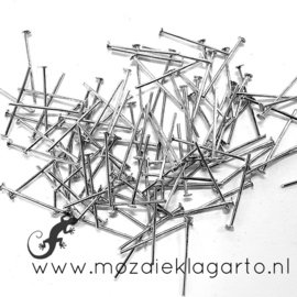 Nietstiften metaal 20 mm per 10 gram