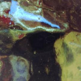 Spiegel gekleurd 5x15 cm Olijfgroen 006