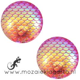 Decoratiesteen kunststof Holografisch 12 mm per 5 Oranje/Roze 58598
