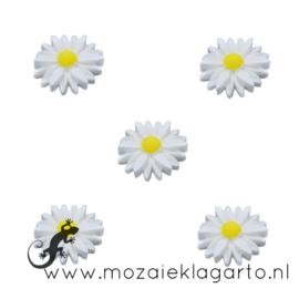 Decoratiesteen kunststof  22 mm bloem per 5 Wit 20685