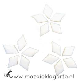 Wybertjes/Ruitjes 10x17 mm per 40 Wit 001-1