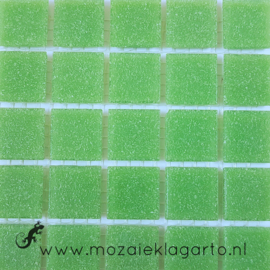Basis glastegels Lentegroen per 25 tegels 022