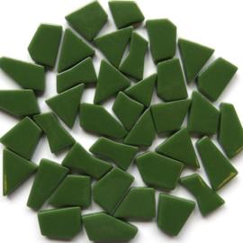 Mozaiek puzzelstukjes Glas 100 gram Dennengroen 037