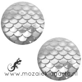 Decoratiesteen kunststof Holografisch 12 mm per 5 Aqua Zilver 58603