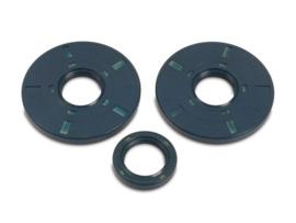 Keerringset TS250/1 ETZ250, ETZ251, ETZ301 (3delig blauw)