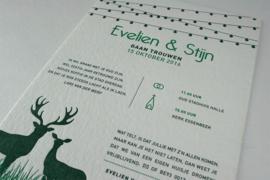 Evelien & Stijn