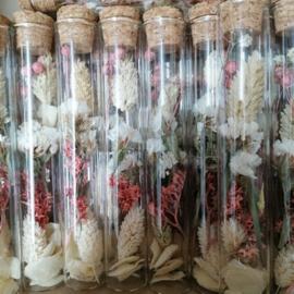 droogbloemen in glazen buisje, wit met oudroze