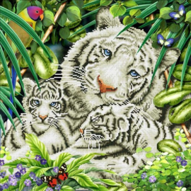 white tiger & cubs