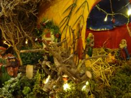 Cursus kerst stal