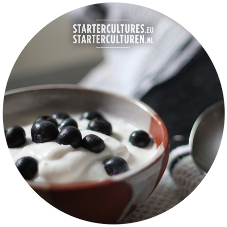 Authentieke Bulgaarse yoghurt starter