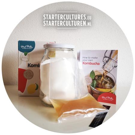 Complete - guaranteed safe - kombucha starterpack