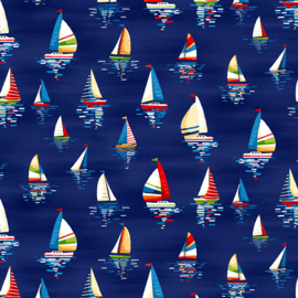 Zeilboten donkerblauw