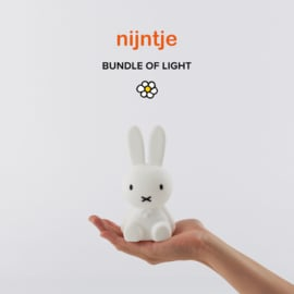 Nijntje Bundle of Light (Mr. Maria)