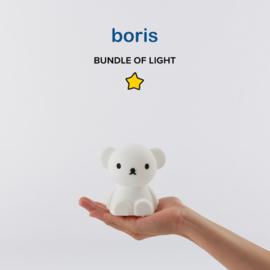 Boris Bundle of Light (Mr. Maria)