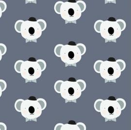 Jersey Koala