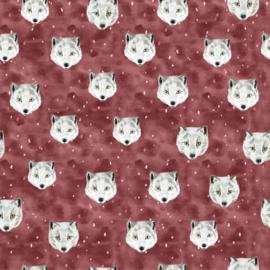 Jersey - Red Fox